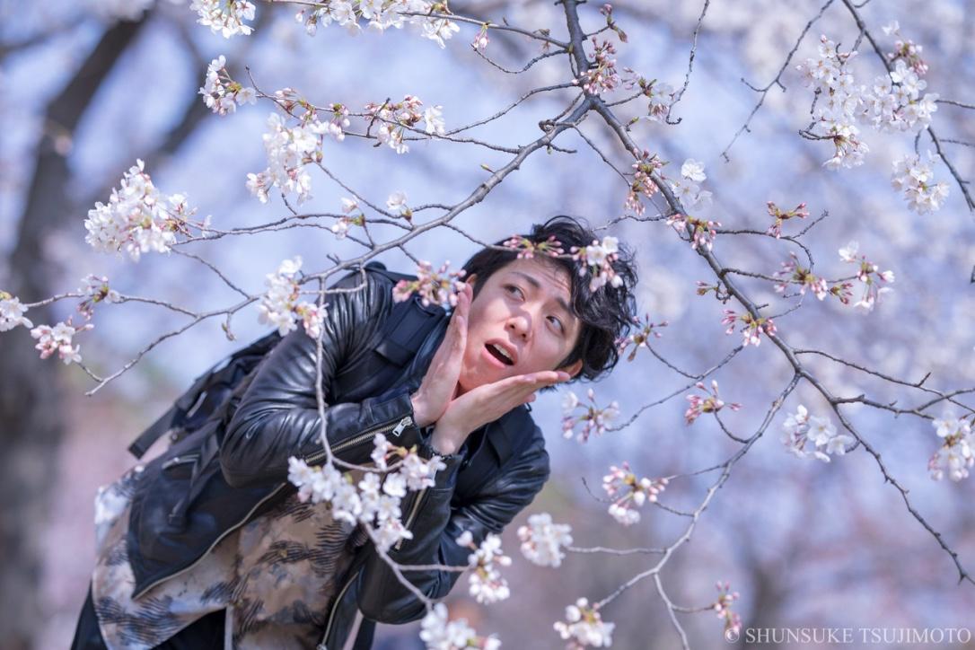 春ですねー!長居公園で桜を見に行きました!