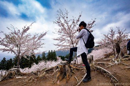 201804吉野山桜ぶらぶら撮影&花見