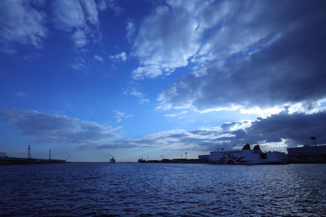 南港サンフラーワー