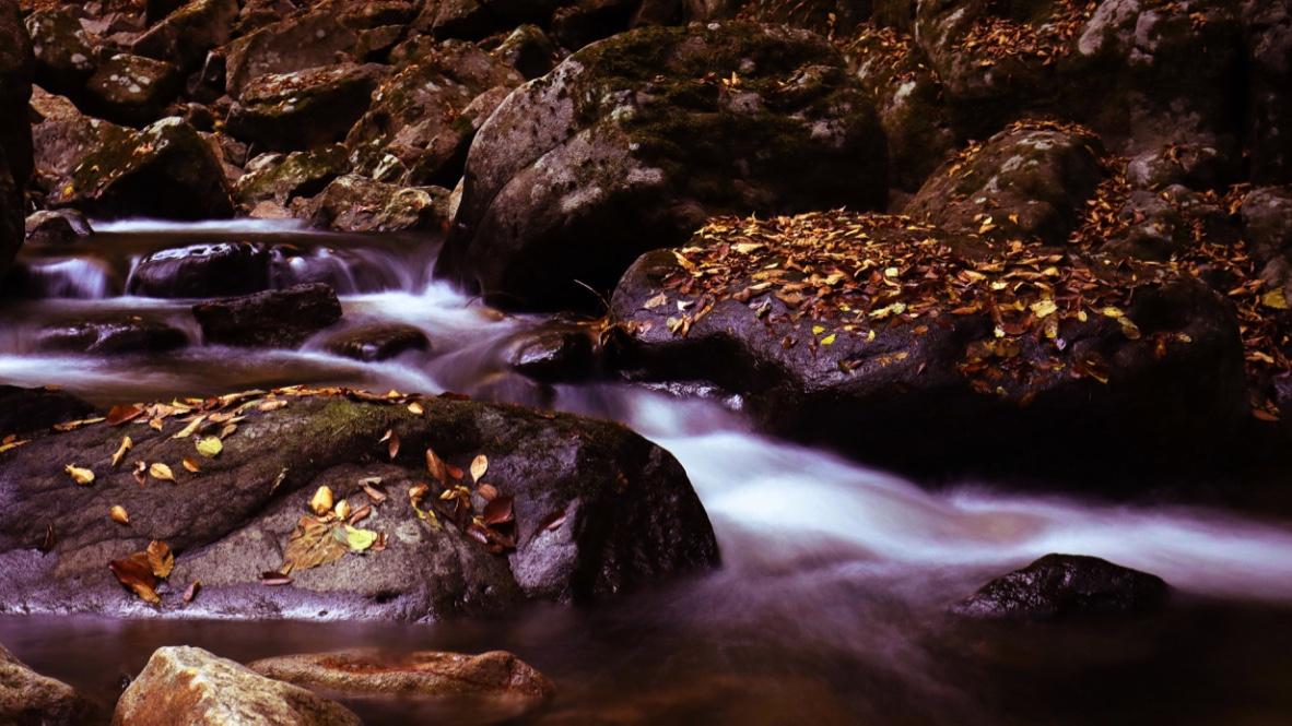 赤目四十八滝へ|長時間露光で滝をサラッと